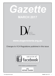 belgian shepherd victoria dogs victoria gazette march 2017 by home of pmg issuu