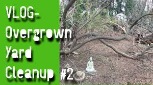 vlog overgrown garden clean up trees and yard cut back phase 2