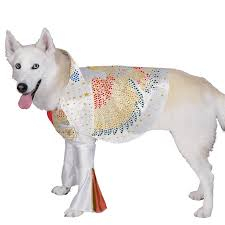 Small Dog Halloween Costumes 41 Pets Halloween Costumes Images Pet