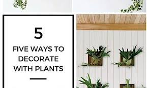 5 ways to decorate your home with plants j heiland interiors