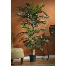 nearly 5289 6 1 2 golden palm silk tree in green