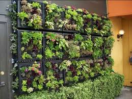 wall garden designs 19 creative ways to plant a vertical garden