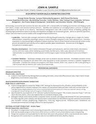 Best Team Lead Resume Example by Social Media Manager Resume Template Best It Templates Samples