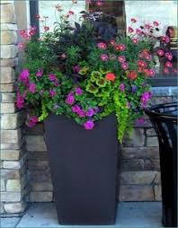 Potted Plant Ideas For Patio by Patio Design Outside In Homescaping Llc Perennials Pinterest
