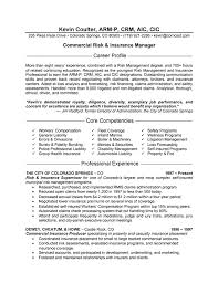 Resume Affiliations Examples by Insurance Manager Resume Example Resume Examples