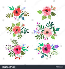 Design For by Vector Flowers Set Colorful Floral Collection Stock Vector