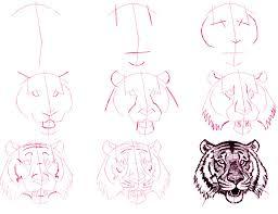 tiger u0027s head lifeandhealth life and health