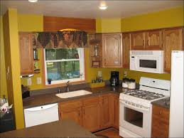 kitchen spray painting kitchen cabinets glass kitchen cabinet