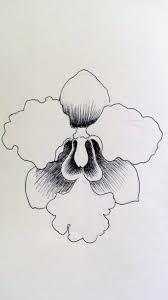 flower power a pen drawing the art of hoe yen tam 浩然之藝