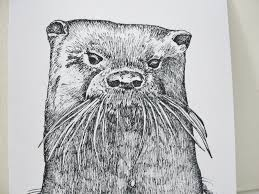 drawing otters mary richmond u0027s cape cod art and nature