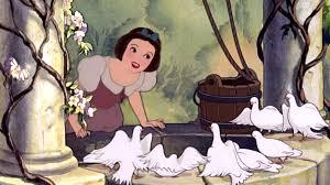 snow white photo gallery disney princess