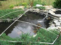 diy pond winter leaf cover build water gardens ponds u0026 pools