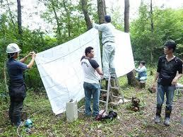 frise chambre gar輟n しいたけの森プロジェクト 鳥取jcしいたけの森プロジェクト 第2弾