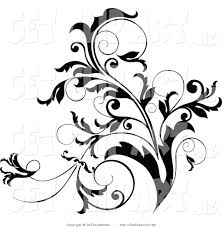 Design Black And White Clip Art Of A Black And White Curly Plant Flourish Design Accent