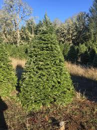 al u0027s hidden valley christmas tree farm u2014 califoregonia