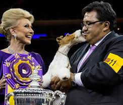 who won the dog show on thanksgiving 2 new dog breeds allowed to compete in westminster kennel club dog