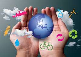 what is environmental science importance components and