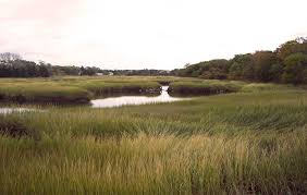 searching the past for a sustainable future on cape cod wcai