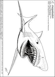 coloring download megalodon shark coloring pages megalodon shark