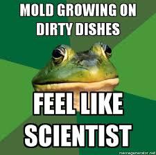 Foul Bachelor Frog Meme Generator - foul bachelor frog nether region of the earth iii page 12
