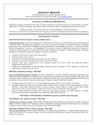 Chief Operations Officer Resume Cbp Officer Sample Resume