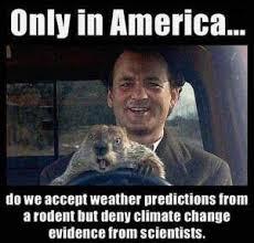 Bill Murray Groundhog Day Meme - image result for meme groundhog day climate change bill murray