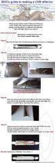 Bearded Dragon Behavior Before Shedding by Best 25 Bearded Dragon Diet Ideas On Pinterest Bearded Dragon