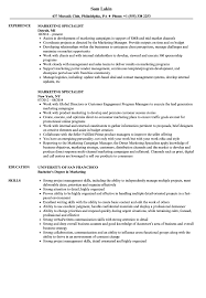 sle resume templates accountant trailers plus lodi marketing specialist resume sles velvet jobs