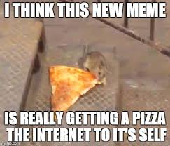 Rat Meme - pizza rat imgflip