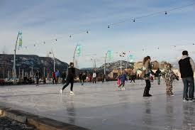 triyae com u003d biggest backyard ice rink various design