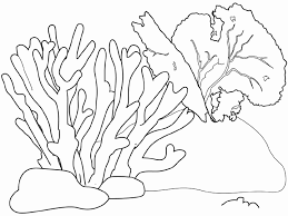 coral reef coloring page for kids coloring home
