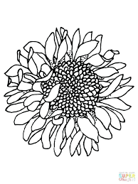 coloring page for van sunflower coloring page sunflowers coloring pages sunflower coloring
