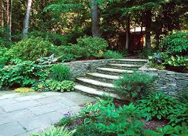 Backyard Trees Landscaping Ideas by Exterior Splendid Garden Landscaping Ideas Stone Ladder Concrete