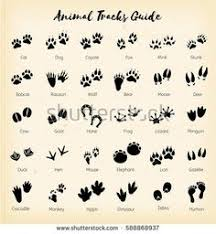 teachers kids and everybody paw print clip art can be used for cat