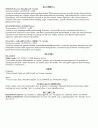 Resume Sample With Summary by Curriculum Vitae Mitre Agency Business Analyst Cv Template