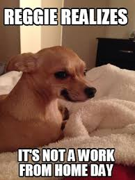 Working From Home Meme - meme creator reggie realizes it s not a work from home day meme