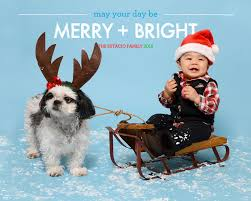 happy holidays from cosmo sled infant