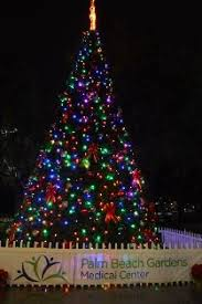 tree lighting festival palm beach gardens fl official website