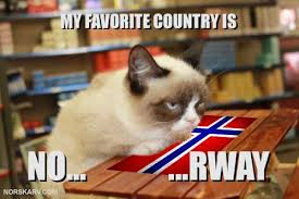 No Meme Grumpy Cat - grumpy cat meme my favorite country is no rway by dean