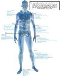 Ankle Anatomy Ligaments Iorthobiologix Stem Cell U0026 Bio Restorative Orthopedics In