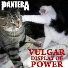 Vulgar Memes - vulgar display of a cat s power heavy metal know your meme