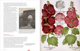 garden flora the natural and cultural history of the plants in