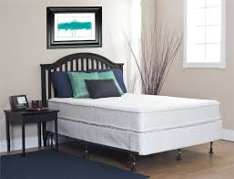 White Bedroom With Blue Carpet Bedroom Exciting Tufted Bed With White Bunkie Board And Stark