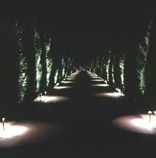 interesting lighting lighting along a driveway can make it more interesting landscape