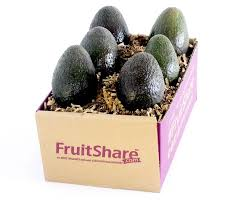 Fruit Gifts Fruit In Season Seasonal Fruit Delivery And Gifts Fruitshare