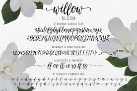 calligraphy font modern calligraphy font willow bloom script fonts creative market