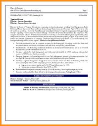 Cfo Resume Executive Summary Chief Financial Officer Resume Samples Resume Sample Cfo Claudio