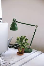 Indoor Plant For Office Desk Office Hours 10 Indoor Plants To Dress Up A Desktop Gardenista