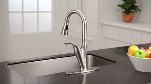 benton pulldown kitchen faucet with reflex moen features