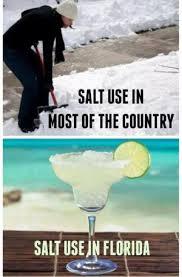 Florida Winter Meme - crunchyroll forum florida hate